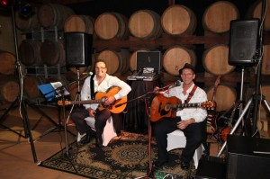 Acoostic Moose. Hunter Valley Wedding Music and Entertainment