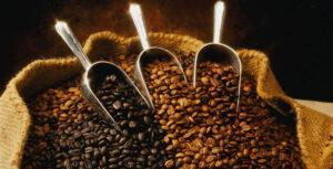 Best Coffee in the Hunter