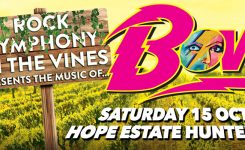 Rock Symphony in the Vines