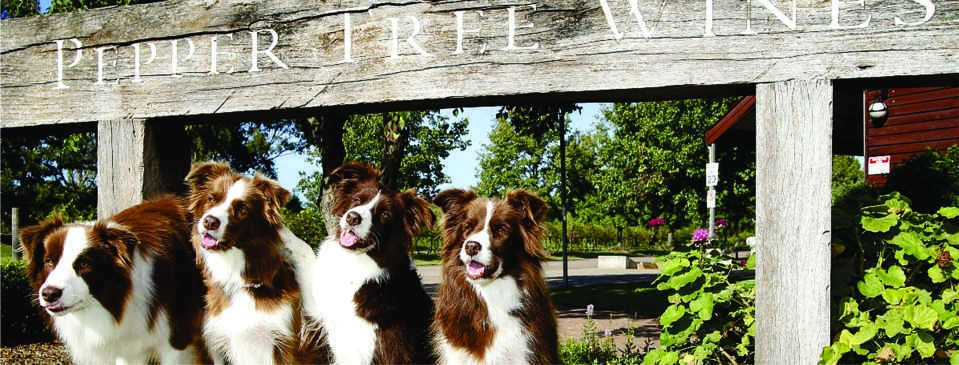 Pepper Tree Wines Dog Day