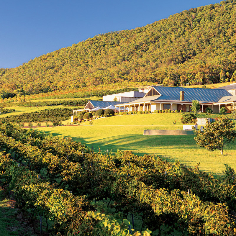 Mount Pleasant Wines Hunter Valley. Hunter Valley Wine