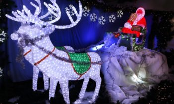 Christmas Lights Spectacular @ Hunter Valley Gardens | Pokolbin | New South Wales | Australia