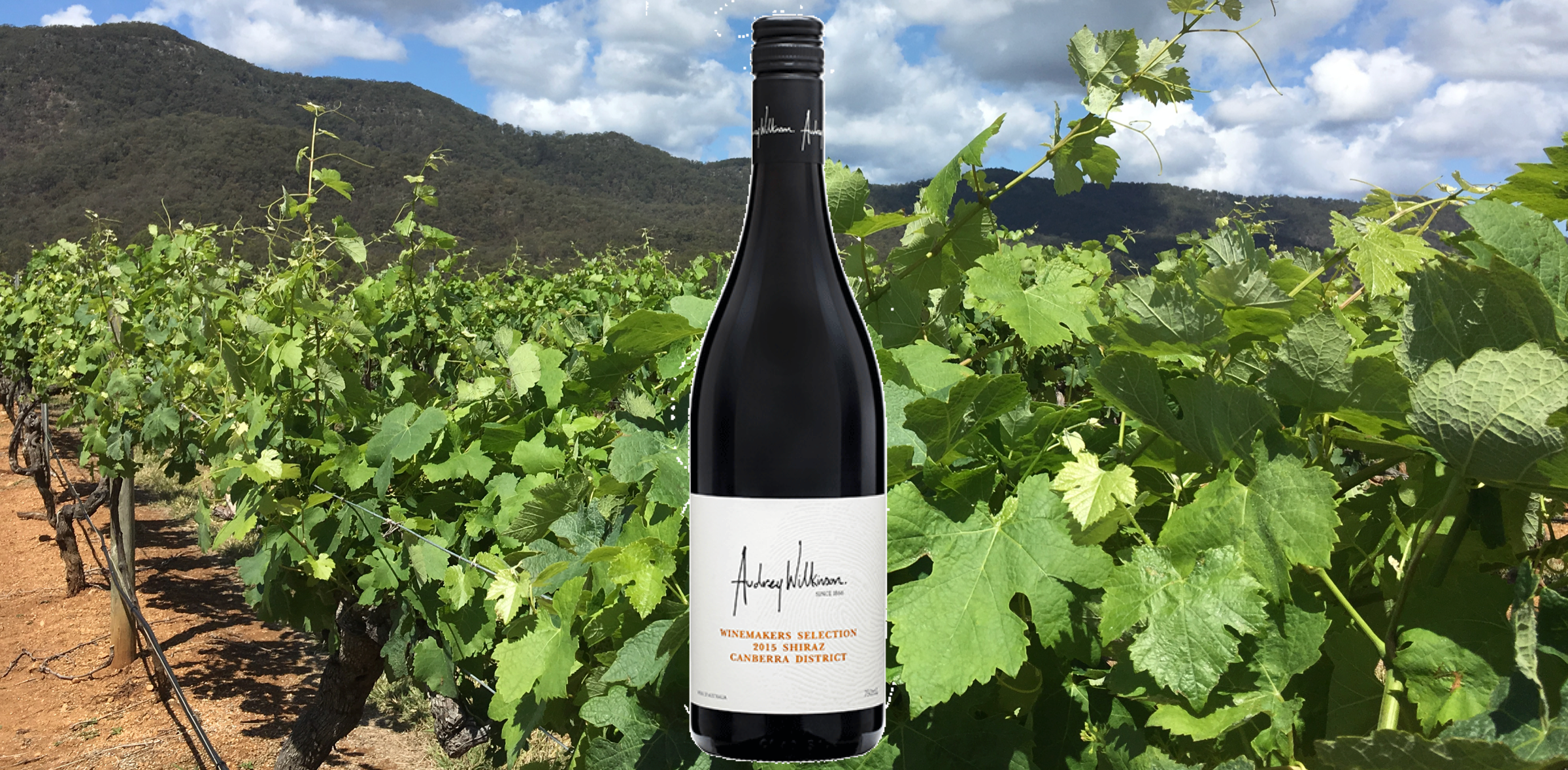 Audrey Wilkinson Winemakers Selection Shiraz